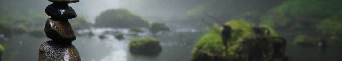 fog-foggy-forest-158607